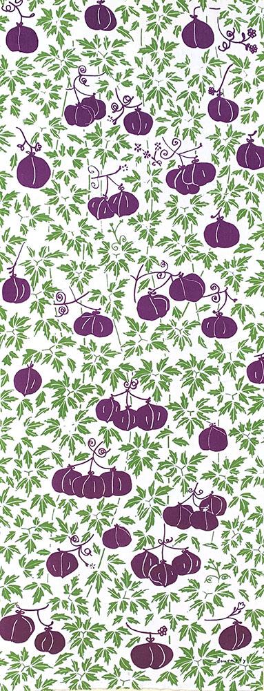 フウセンカズラ 紫