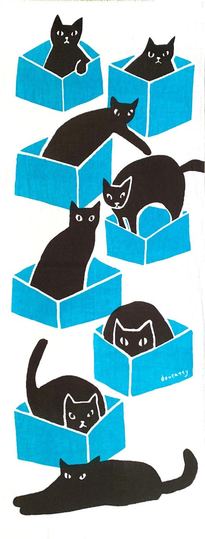 箱ネコ blue
