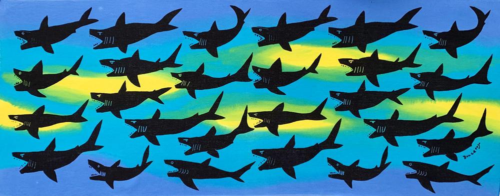 サメ11.26.02